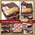 Autumnsplendorkit_SOLD OUT
