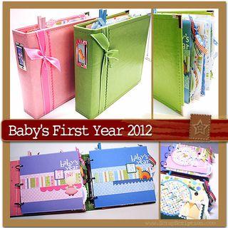 Babys1styear2012kit